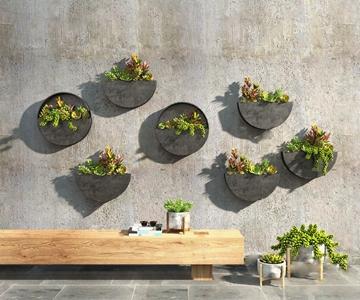 现代多肉植物3D模型【ID:236237828】