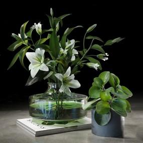 現代云圓形花瓶植物盆栽3d模型【ID:247041832】