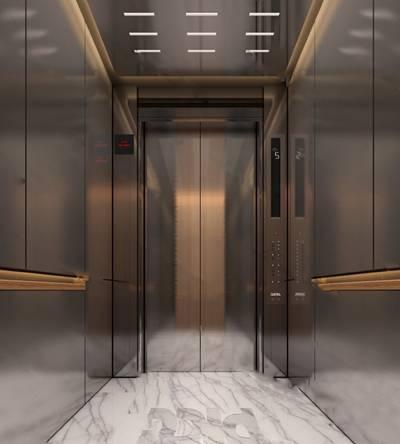 电梯厅3D模型下载【ID:419664913】