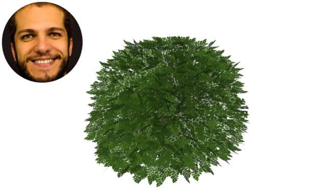 buxinho黄杨黄杨buxinha脕rvore盒SU模型【ID:739405902】