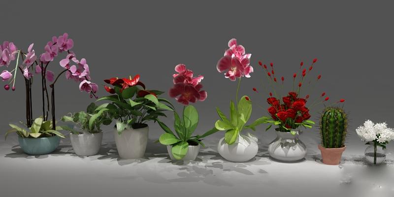 现代盆栽3D模型【ID:120616812】
