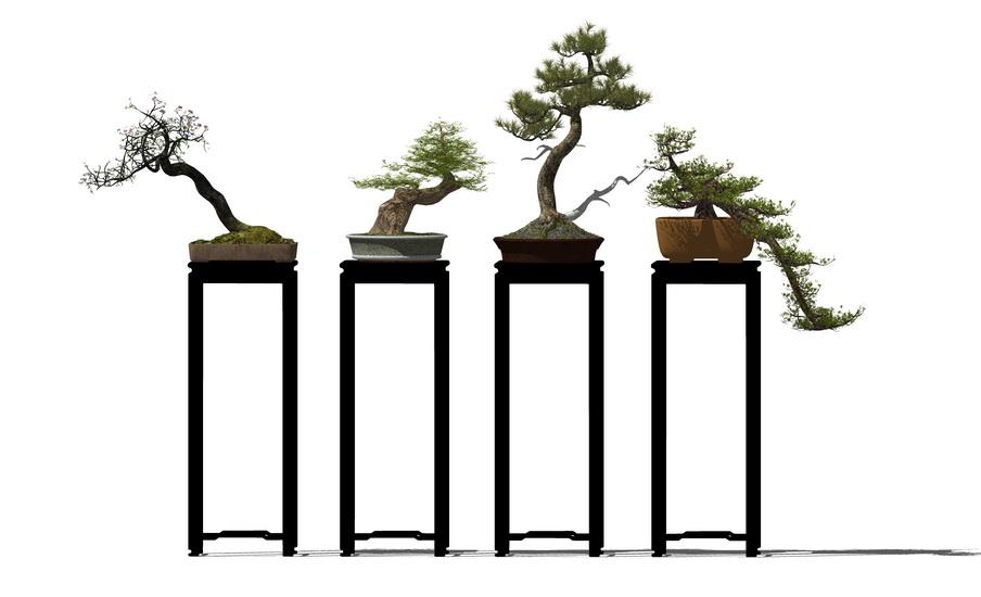 中式盆栽SU模型【ID:236335160】