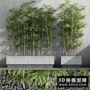 竹子國外3D模型【ID:229313660】