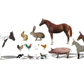 家禽动物组合SU模型【ID:846380012】