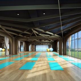现代瑜伽室3D模型【ID:927973654】