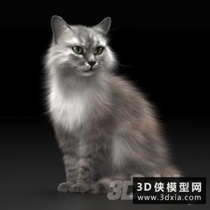 貓國外3D模型【ID:329460047】