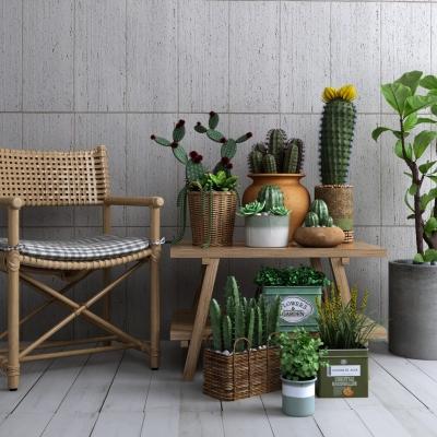 現代多肉仙人掌植物盆栽藤編椅子組合3D模型【ID:327791852】