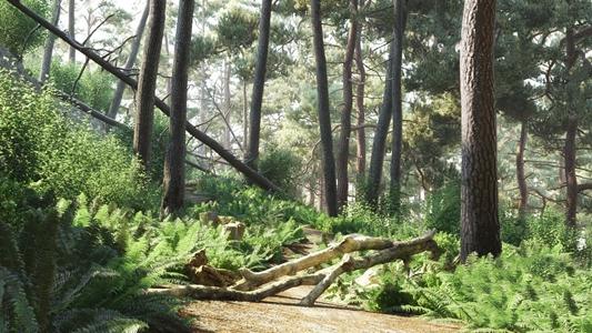 森林树木植物场景3D模型【ID:141355486】