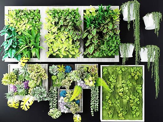 現代多肉綠植畫框植物墻3D模型【ID:16963518】