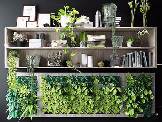 现代盆栽书籍摆件植物墙组合3D模型【ID:17077210】