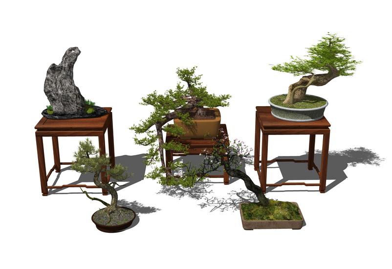 中式盆栽SU模型【ID:236345179】