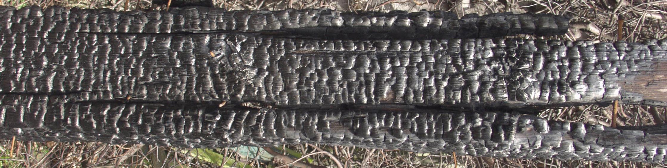 木材-燃烧过的-木梁(4)高清贴图【ID:836582247】