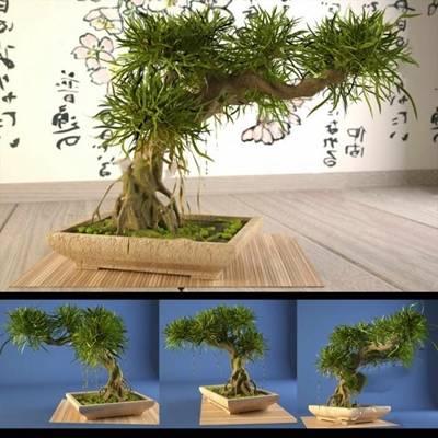 盆景3D模型下载【ID:319605818】