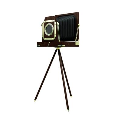 棕色照相机3D模型【ID:215233773】