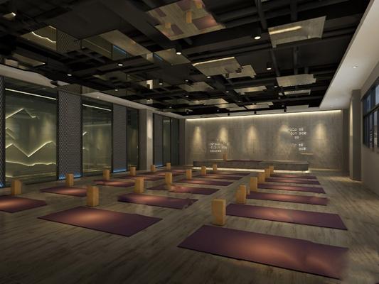 工业瑜伽室3D模型【ID:620606074】