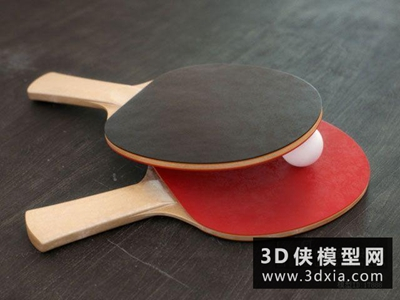 乒乓球拍國外3D模型【ID:129602832】