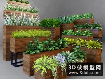 現代植物組合國外3D模型【ID:229383712】
