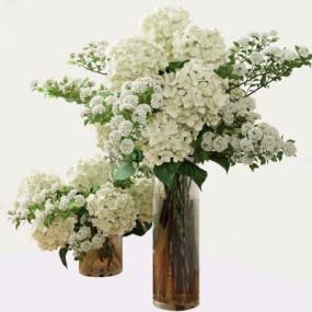 现代花瓶花卉3D模型【ID:327792891】