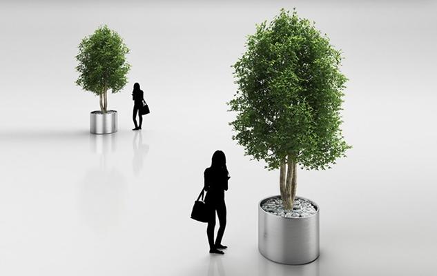 绿色景观树3D模型【ID:315004912】