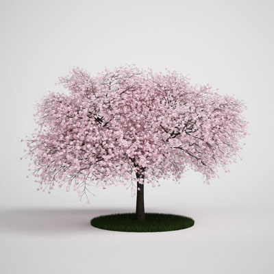 粉色景观树3D模型【ID:315071910】