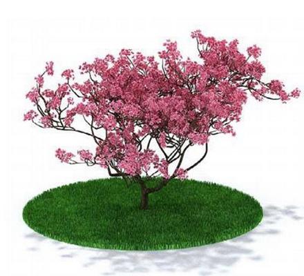 粉色景观树3D模型【ID:315076913】