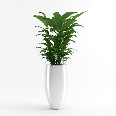 绿色景观树3D模型【ID:315222994】