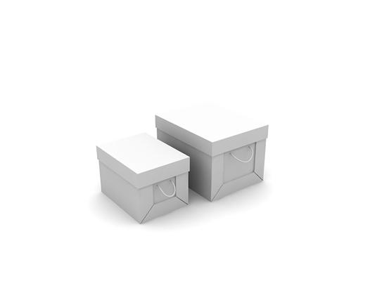 白模收纳箱收纳筐3D模型【ID:315367209】