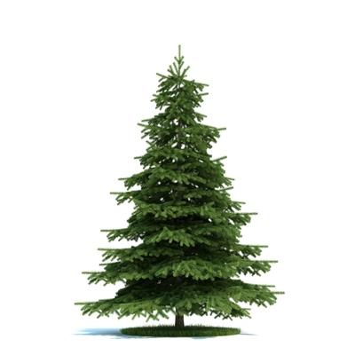 绿色景观树3D模型【ID:316923922】