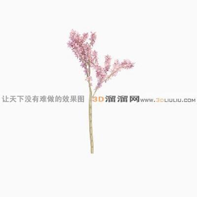 树893D模型【ID:317321509】