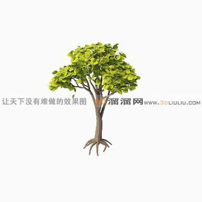树1003D模型【ID:317321558】