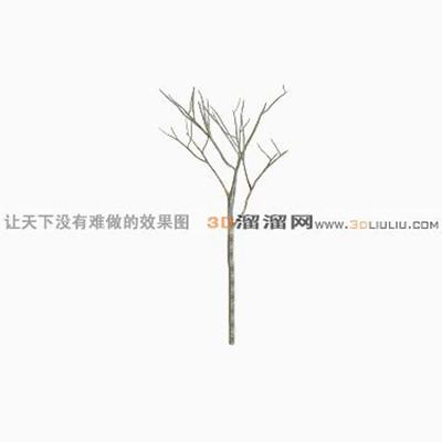 树1253D模型【ID:317324561】