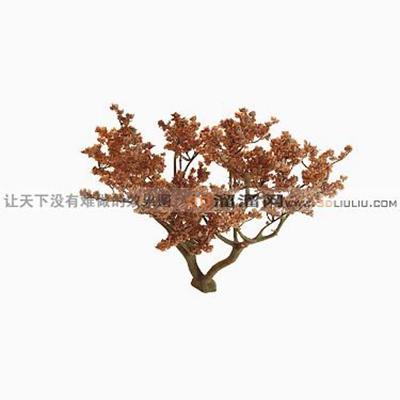 树1323D模型【ID:317324589】