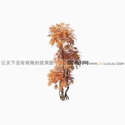 树1343D模型【ID:317325500】