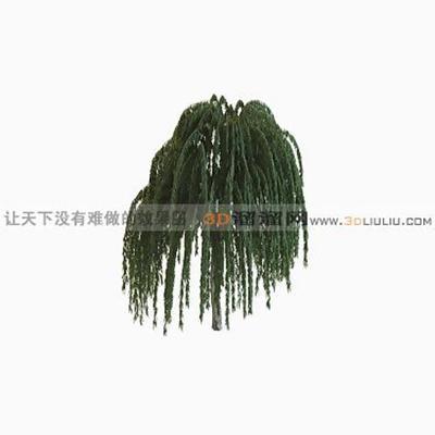 树1463D模型【ID:317325545】