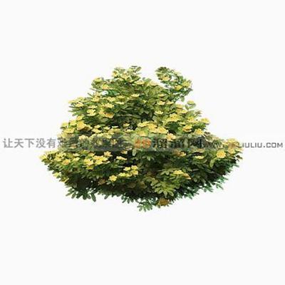 树1483D模型【ID:317325557】