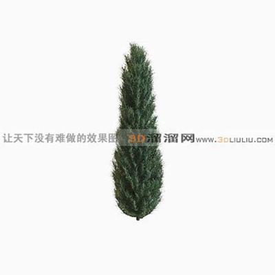 树1503D模型【ID:317325576】