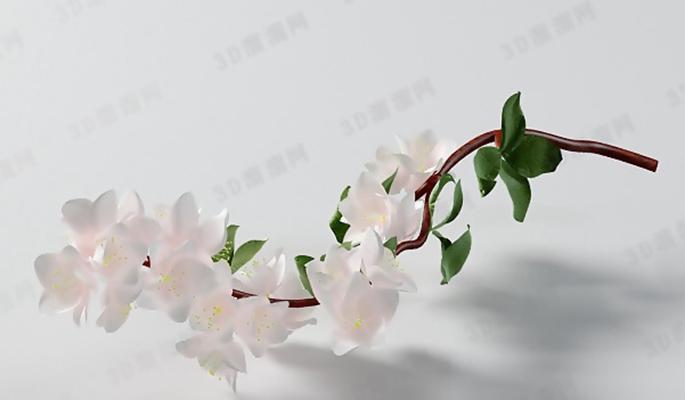 花23D模型【ID:317348746】