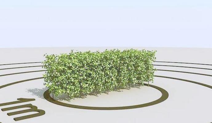 景观树143D模型【ID:317351961】