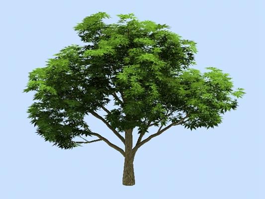 绿色树3D模型【ID:317533674】