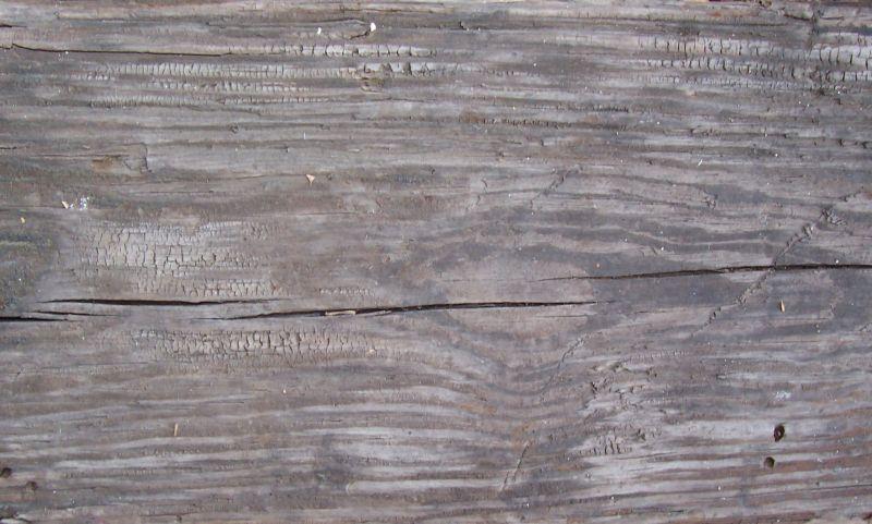 木纹木材-树皮高清贴图【ID:236637346】