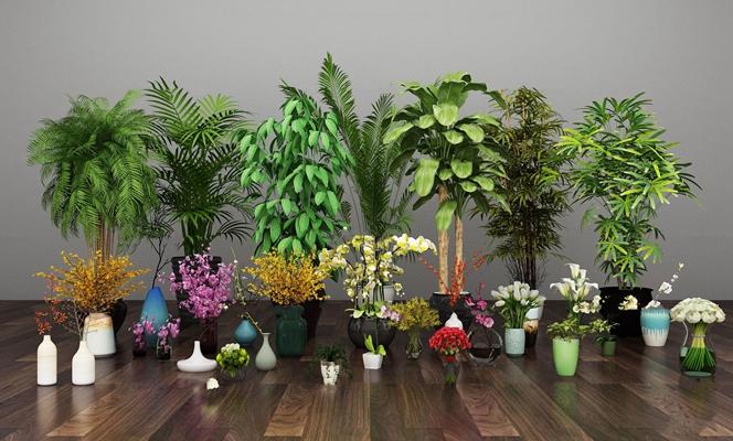 现代兰花百合玫瑰绿植盆栽组合3D模型【ID:36864085】