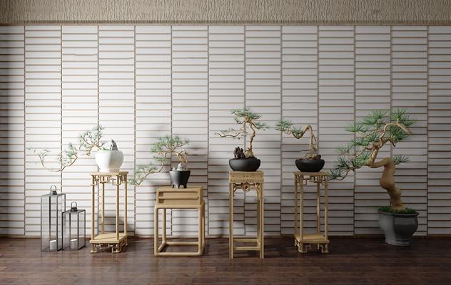 中式花几松树盆景盆栽组合3D模型【ID:37069089】