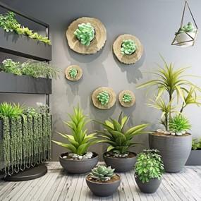 植物盆栽花架组合3D模型【ID:37141685】