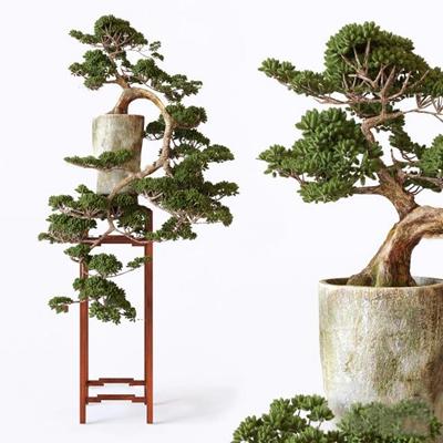 中式盆栽3D模型【ID:37141784】