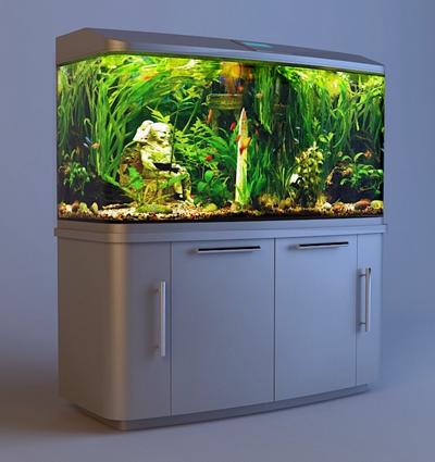 现代白色高柜鱼缸3d模型【ID:37142985】