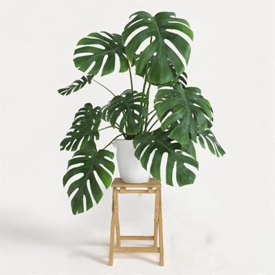 盆栽3D模型【ID:37164889】