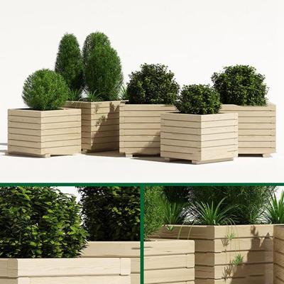 现代植物盆栽组合3d模型【ID:37176480】