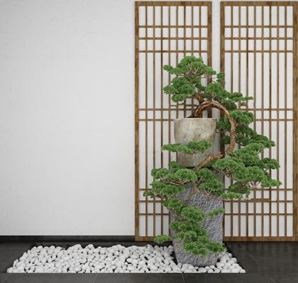 中式松树盆栽3D模型【ID:37211484】