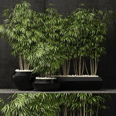 现代竹子植物盆栽3D模型【ID:37238277】