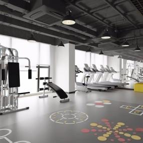 健身房3D模型【ID:927968649】